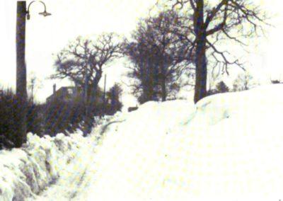 50 Norton Hall La 1947